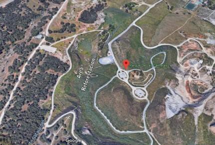 Area Reforestación 2